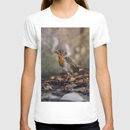 A careful look T-shirt