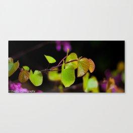 Plant moment. 2 Canvas Print