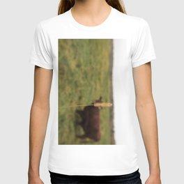 Walking the cow T-shirt