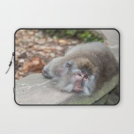 Crab-eating Macaque VI (Balinese Monkey) Laptop Sleeve