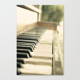 Tickling The Ivories Canvas Print