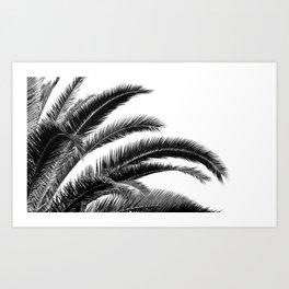 Tropical Darkroom #116 Art Print