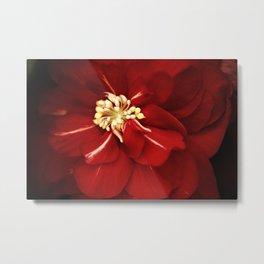 Madeira Begonia Metal Print