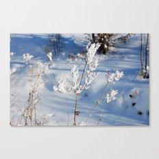 Winter sprig Canvas Print