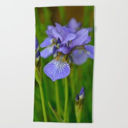 Siberian Iris by Teresa Thompson Beach Towel