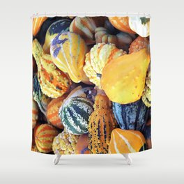 Colorful Gourds Close Up Shower Curtain