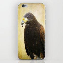 A Harris Hawk iPhone Skin