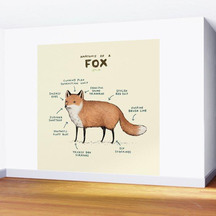 Anatomy of a Fox Wall Mural