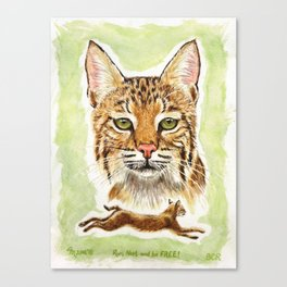 Noel Bobcat - Run Free Canvas Print
