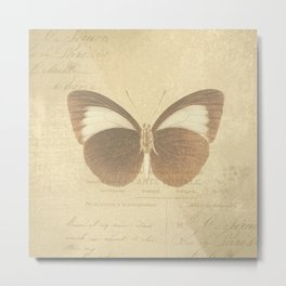 Vintage Paris Butterfly Metal Print