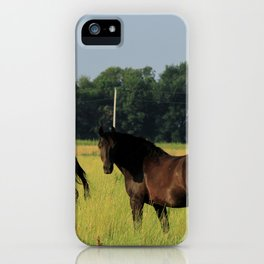 Horses in a green Pasture iPhone Case