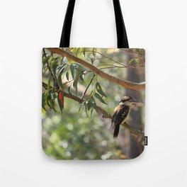 Kookaburra sitting in a gum tree Tote Bag