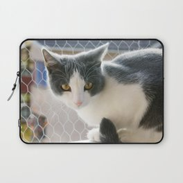 A Max And Mantle Bi Colour Cat Laptop Sleeve