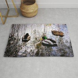 Three mallard ducks in a pond Rug