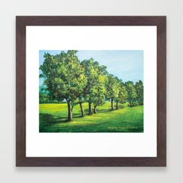 Summer Trees Framed Art Print