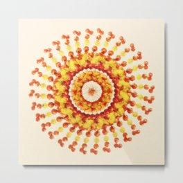 Round berries Metal Print