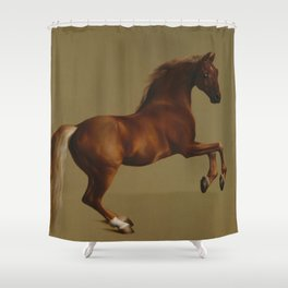 Whistlejacket by George Stubbs 1792 Shower Curtain