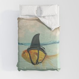 Brilliant Disguise (RM) Comforters
