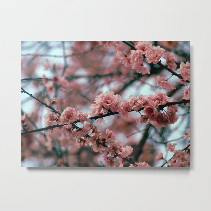 Angular Bouquet Metal Print