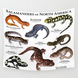 Salamanders of North America Wall Tapestry