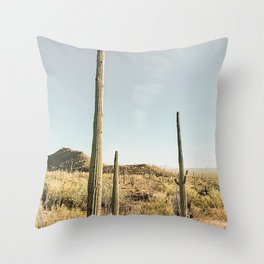 Spirit of the Desert Throw Pillow