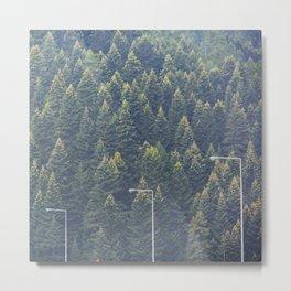 Forest autumn greece Metal Print