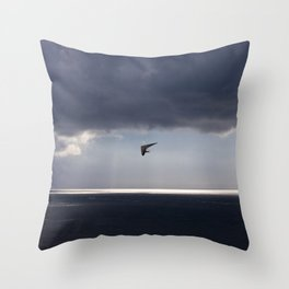 flying over the ocean Throw Pillow