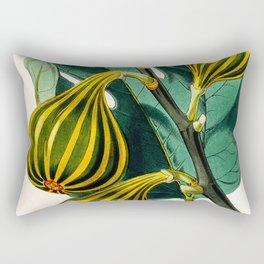 Fig plant, vintage illustration Rectangular Pillow