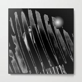 Zebra S60 Metal Print