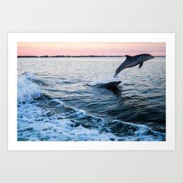 Dolphins near Cocoa Beach Art Print