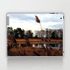 002. Laptop & iPad Skin