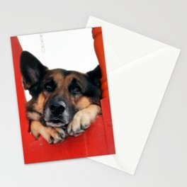 Sad Dog In Red Balcony. Closer Photo Stationery Cards