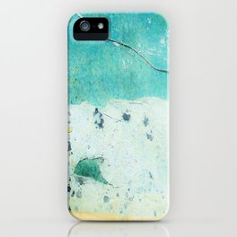 butterfly (2 of 4) iPhone Case