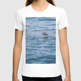 Cute Puffin takes off from the water T-shirt