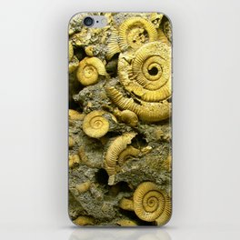 Fossils - Ammonite - Coiled Cephalopods  iPhone Skin