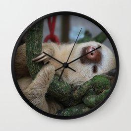 Sleeping baby sloth Wall Clock