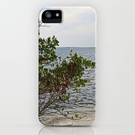 They Met at the Peace River iPhone Case