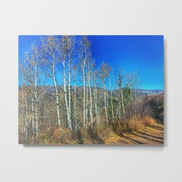 Aspens on Red Mountain - Glenwood Springs, CO Metal Print