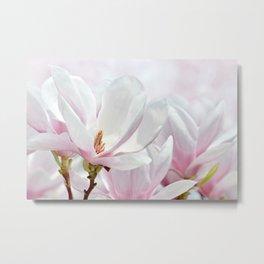 Magnolia 0140 Metal Print