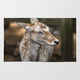 Spotted Deer Rug