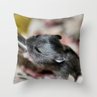 hamster Throw Pillows featuring Tiny Hamster by IowaShots