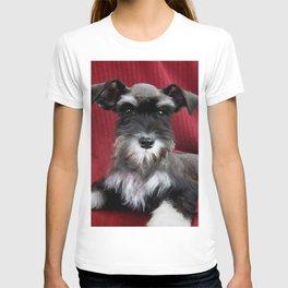 Oreo Schnauzer Puppy T-shirt
