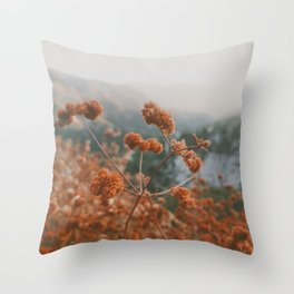 Angeles National Forest  Throw Pillow