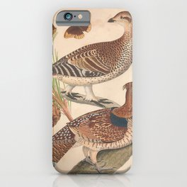Ruffed Grouse Sharp tailed Grouse9 iPhone Case