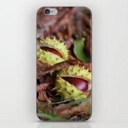 dwa kasztany iPhone Skin