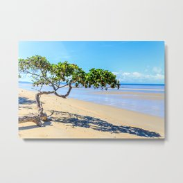 Beautiful day on the beach at Cape Tribulation, Queensland, Australia Metal Print