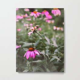Buzzy Blooms Metal Print