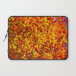 Blazing Fall Canopy Laptop Sleeve