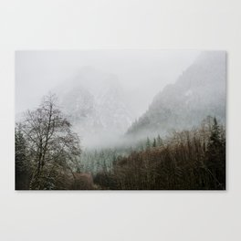 First Snow 2 Canvas Print