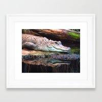 crocodile Framed Art Prints featuring Crocodile by Carole Ballereau